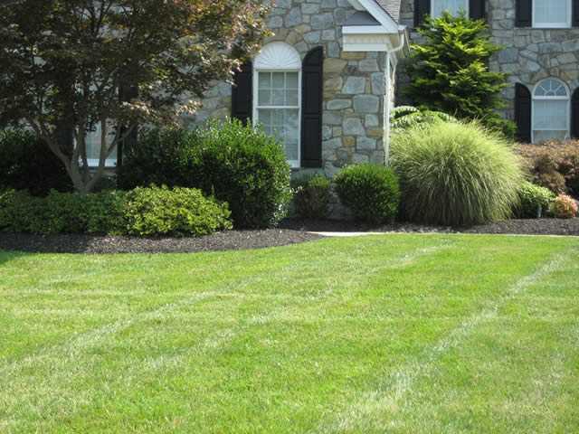 Benefits Of Organic Yard Care